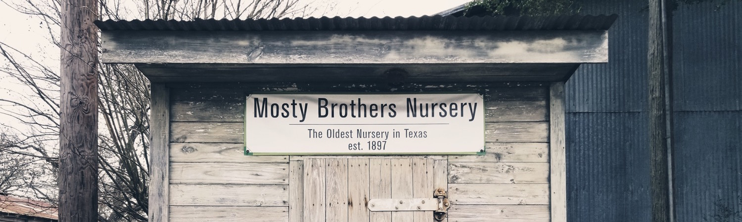 mosty nursery old freezer